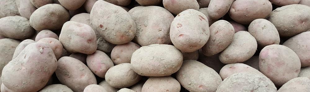 slider-aardappelen